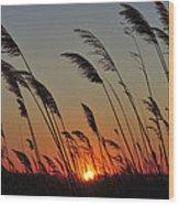 Sunset Island Beach State Park Nj Wood Print