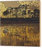Sunset Jd Wood Print