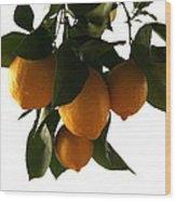 Sunset Lemons Wood Print