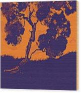Sunset Madrone Wood Print