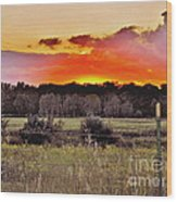 Sunset Meadow Wood Print