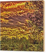 Sunset Navajo Tribal Park Canyon De Chelly Wood Print