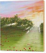 Sunset Of Spring Wood Print