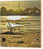 Sunset On A Sandy Beach Wood Print