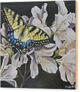 Sunset On A Swallowtail Wood Print