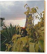 Sunset On Leaves Wood Print