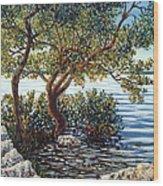 Sunset On Morada Bay Wood Print