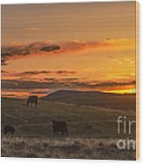 Sunset On Open Range Wood Print