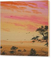 Sunset On The Coast Wood Print by James Williamson