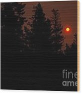 Sunset On The Pines Wood Print