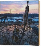 Sunset On The Pond Wood Print