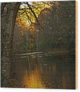 Sunset On The River Wood Print