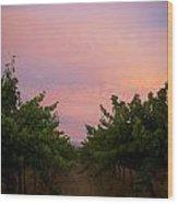 Sunset On Vines Wood Print