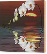 Sunset Orchids Wood Print