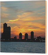Sunset Over Chicago 0349 Wood Print