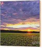 Sunset Over Farmland Wood Print by Olivier Le Queinec