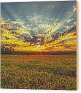 Sunset Over Field Wood Print