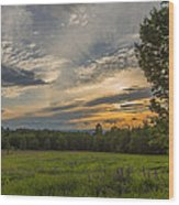 Sunset Over Lupine Fields Wood Print