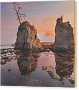 Sunset Over Pig And Sow Inlet At Oregon Coast Wood Print