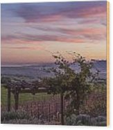 Sunset Over Sonoma Coast Wood Print