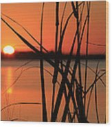 Sunset Over The Bay Wood Print