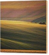 Sunset Palette Wood Print