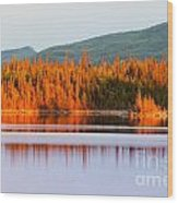Sunset Reflections On Boreal Forest Lake In Yukon Wood Print