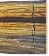 Sunset Riverlands West Alton Mo Dsc03317 Wood Print
