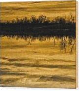 Sunset Riverlands West Alton Mo Sepia Tone Dsc03319 Wood Print