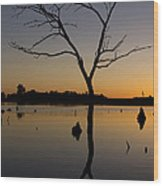 Sunset Riverlands West Alton Mo Portrait Dsc06670 Wood Print