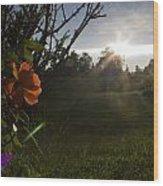 Sunset Roses Wood Print