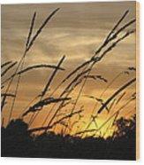 Sunset Sentinels Wood Print