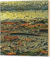 Sunset Shore Wood Print