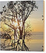 Sunset Silhouette And Reflections Wood Print
