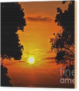Sunset Silhouette By Diana Sainz Wood Print