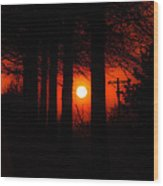 Sunset Silhouette Painterly Wood Print