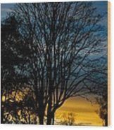 Sunset Silhouette Wood Print