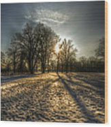 Sunset Snow Trees Wood Print