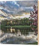Sunset Southern  Wood Print