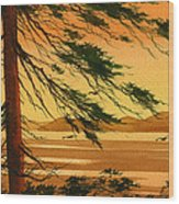 Sunset Splendor Wood Print