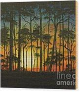 Sunset Over St. Joseph's Peninsula Wood Print