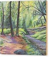 Sunset Stroll  Wood Print