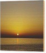 Sunset Swim Wood Print