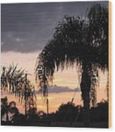 Sunset Through The Palms Wood Print