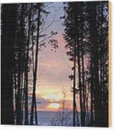 Sunset Through The Pines Wood Print