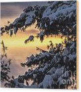 Sunset Through The Snowy Branches Wood Print