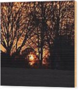 Sunset Through The Trees Wood Print