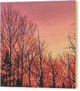 Sunset Through Trees Wood Print