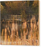 Sunset Tranquility Wood Print