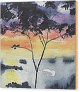 Sunset Tree Koh Chang Thailand Wood Print